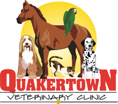 Quakertown Veterinary Clinic